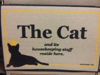 THE CAT DOORMAT